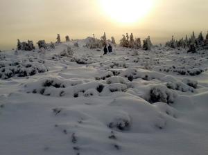 Platoul de zăpadă al Călimanului