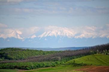 Vârful Suru, Munţii Făgăraş