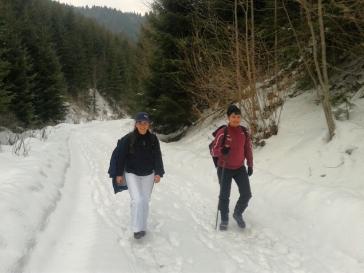 Valea Scwartz