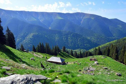 Stâna de sub Vârful Lespezi