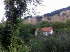 Pe acest versant(drept), casele sunt puține, iar culturile agricole lipsesc