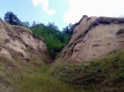 Organism torențial dezvoltat în versantul drept al văii