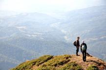 Vârful Gorgan-1530 m, vârf care dă și denumirea crestei secundare, ce se desprinde imediat de sub Vârful Ţibleş. Jos, Valea Bradului, vale prin care se face accesul spre zona înaltă a Ţibleşului