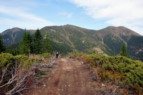 Zona înaltă a Munții Ţibleș, este puternic antropizată, lucru pe care inițial nu l-am știut. În această fotografie, avem un drum care urcă pe Creasta Gorganului. În prezent acesta este blocat, prin doborârea intenţionată de copaci