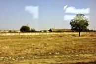 Nici țipenie de om, la intrarea în Tighina, tendința care s-a menținut de altfel, de-a lungul întregii zile. Fotografie din tren
