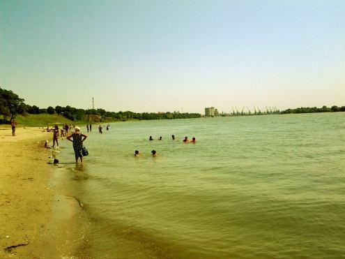 Brațul Chilia al Dunări