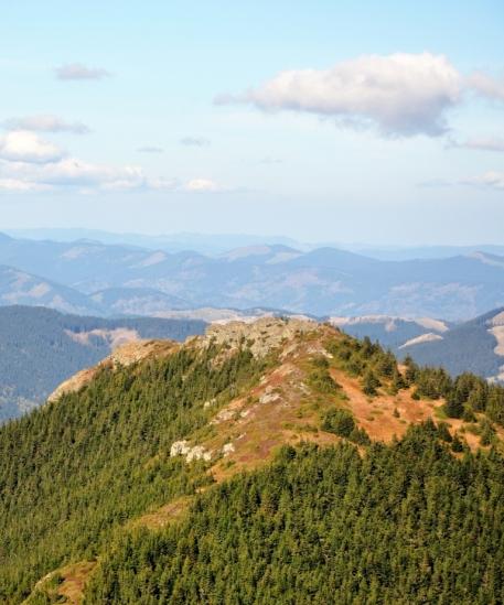 Creasta Pietrosului din Munții Bistriței