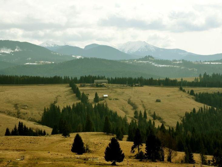 Vârful Bistricioru din Masivul Călimani
