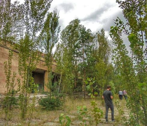 Străzile și bulevardele Pripyat-ului sunt cucerite aproape în totalitate de natură