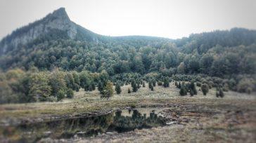 Tăurile Chendroaiei reprezintă două ochiuri de apă, de doar 5 pe 10, respectiv 5 pe 15m, reminescente ale unui fost lac, ce era mult mai mare, dar prin colmatare, inmlastinire, s-a transformat într-un tinov, bombat în partea centrală. Sursa: https://peterlengyel.wordpress.com/2012/06/18/taul-chendroaiei-muntii-gutai/