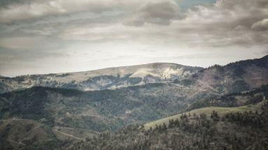 De defrișări enorme nu duce lipsă muntele nici aici. Nu am putut realiza însă o fotografie de pe frontieră, din care să se poată vedea diferențele enorme ce există aici, între o Ucraina plină de pădure și o Românie cheală