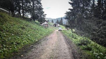 Profitând de calitatea forestierului, turmele de oi mânate de ciobani, urcă până aproape de frontieră. Poveștile în care animalele scăpate de sub supravegherea ciobanului, trec la păscut de partea cealalată, ne însoțesc și aici