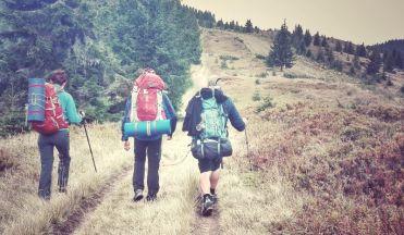Odată ajunși sus, pe fâșia de frontieră, luăm la pas banda defrișata în scopul delimitării teritoriale ale celor două țări și ghidați de borne, pornim spre Vârful Farcău din Munții Maramureșului